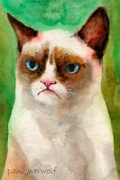 Grumpy cat by pani-werwolf