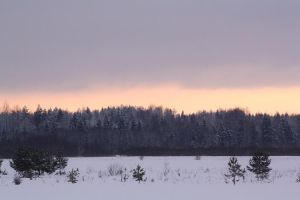 Winter sunset by GertuSaariste