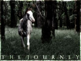 The Journey by nevermoregraphix