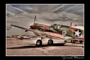 P40 by BobS073