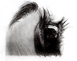 Eye drawing 4 by IYIaglin