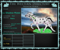 Shadow Moses | Western Directory | Premium by DreamDrifter91
