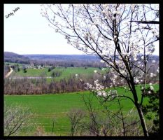 Spring In Missouri 3 by PridesCrossing