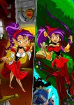 Shantae the genie of Sherwood by gizmo01