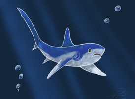 Shark Week 2012 - Thresher Shark by Domisea