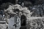 framed tomb by vw1956