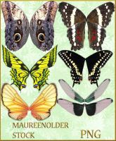 STOCK PNG butterfly wings by MaureenOlder