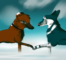 Tydii and Detrah! Two paws together by Greisikoira