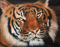 Sumatran tiger - Acrylics by machine-guts