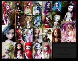 Monster High Doll Repaints by mortimersparrow