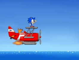 Flying in the Tornado by Lucky-Sonic-77-d