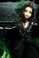 Bellatrix by Amaranthine-Moon