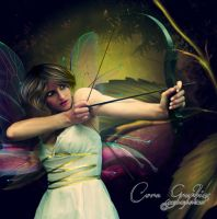 Rainbow fairy by CoraGraphics