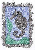 Seahorse by ExScout