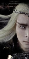 The Hobbit Thranduil cosplay by cosgalaxy