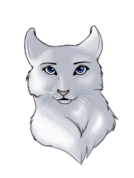 White cat by Afina-Energy