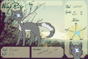 Sage application || WingRise by rxven-pxws