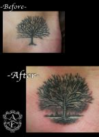 Tree Re-Work Tattoo done by Sean Ambrose by seanspoison