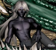 Dragon and Drow: Drow Detail by Cherise75