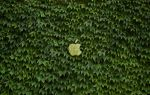 Eco Apple wallpaper by JarekZ