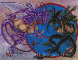 The Duelists by rachaelm5