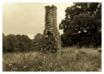 Old Rock Chimney by TheMan268