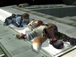 Fox McCloud and Solid Snake by Jongamer