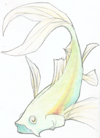 fish by september28