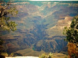 Grand Canyon by blakelemmons