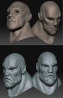 More Quick Zbrush Heads by Cok3ster