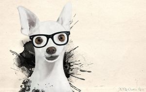 Hipster Dog by Aymen-Ouertani