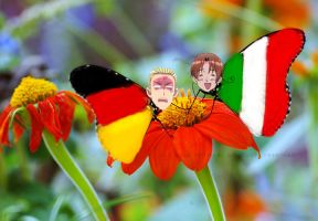 Germany and Italy butterflies~ by melancholy-fox