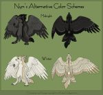 Nym's Alternative Colors by KatieHofgard