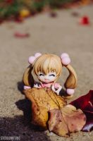 Fall by stereometric