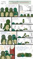 Ask the AU Turtles: 8 by 10yrsy