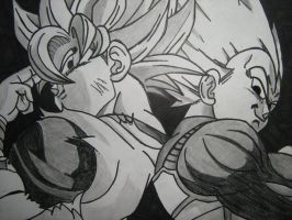 ssj goku and ssj vegeta back to back by sheamusbyrne