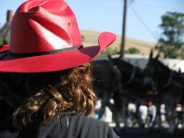 Cowgirl watching the parade by Cyberpriest