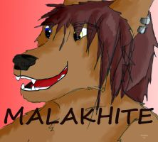 Avatar by Malakhite