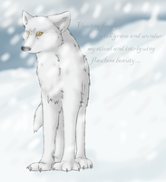 Arctic Wolfy by Zayger