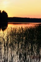 Sunset in Finland by Barry-Nev