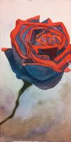 Rose in Shadow Blue by CheshFire