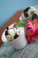 Mint Chocolate Ice Cream by laurenjacob