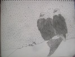 Bald eagles in snow by wolvesthewarrior