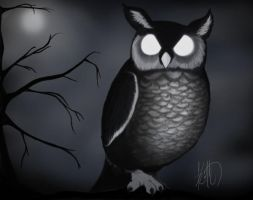 Owl Illustration by Keith-QuintanillA