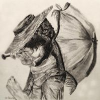 Pencil: Poldark Parasol by shuckaby
