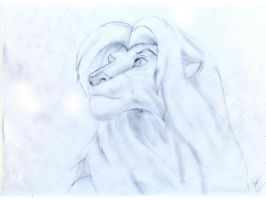 mature simba by Thomster