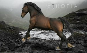 Ethopia by TheIceViking