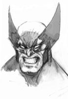 wolverine sketch by arjorda
