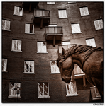 Dockland Horse by Ondro