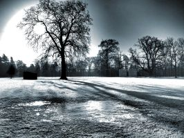 Frost in the morning - Kimbolton by davepphotographer